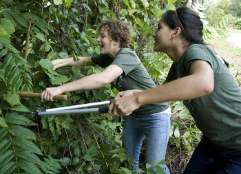 Emily Bowman (left) and Hannah Canaviri, along with the other sophomores on Yoder 3, helped Goshen Parks and Recreation prune back trees at the Rieth Interpretive Center.