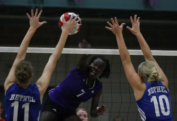 Peni Acayo, one of Goshen College's star volleyball players, jumps up for a spike in Tuesday's game against Bethel.  Goshen defeated Bethel, securing the Leafs' spot in the MCC Semifinals. Photo by Martin Brubaker.