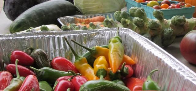 Students reap Merry Lea harvest