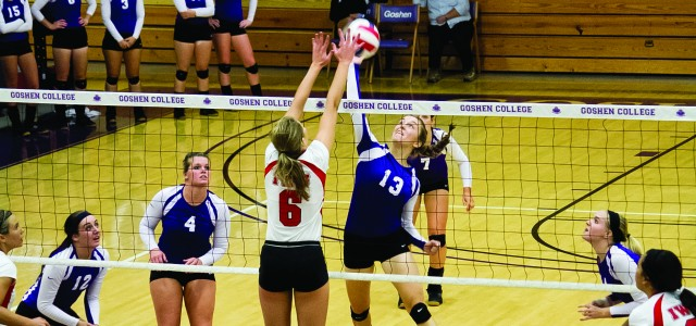 Volleyball, young and experienced, bounces back