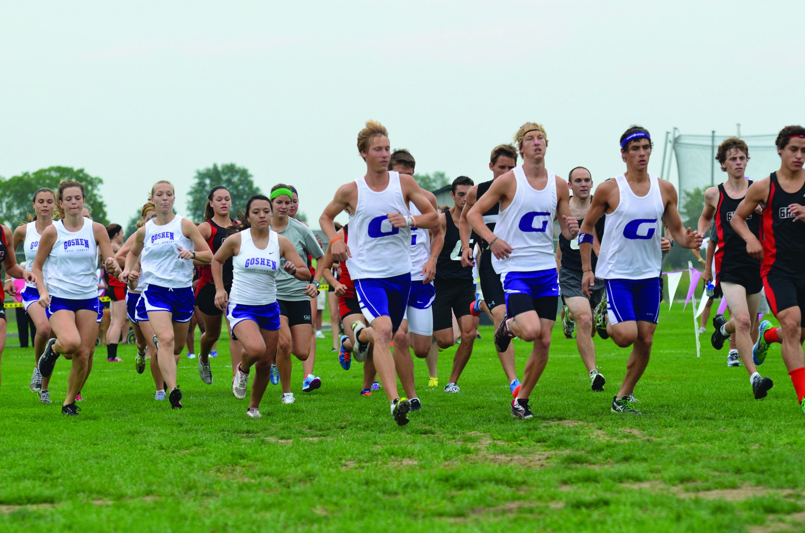large pack of cross country runners