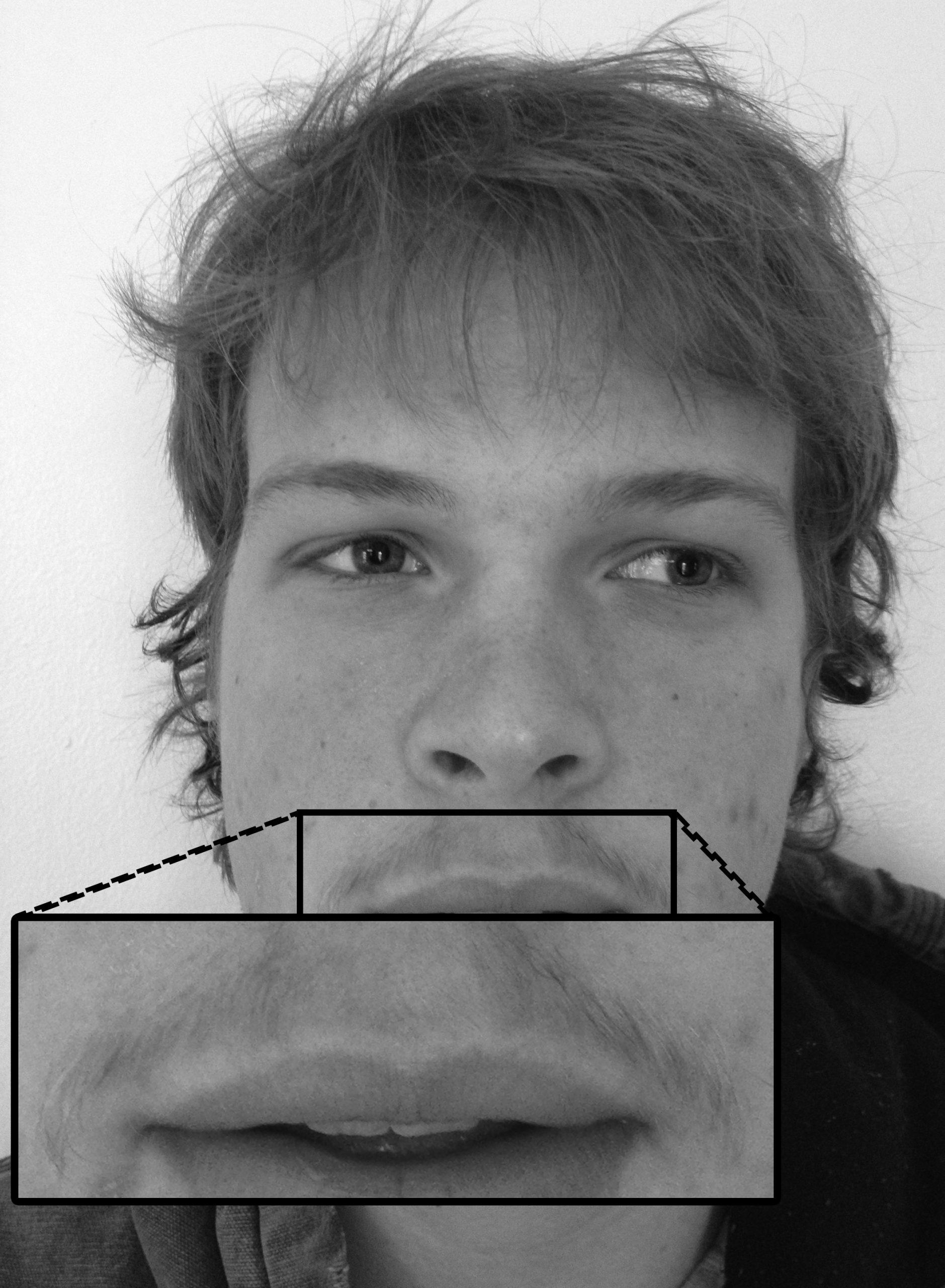 Close up mustache picture
