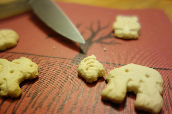Image of a beheaded animal cracker