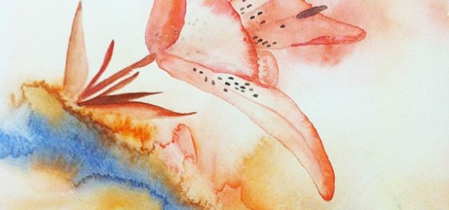 Artist Corner: Mandy Schlabach