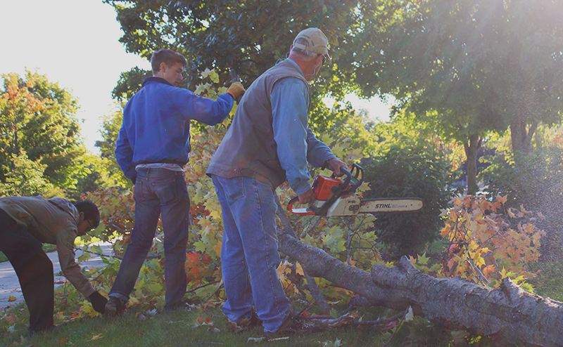 Craig Johnson and two students work on the Goshen College grounds and landscaping. Johnson prepares to saw a fallen tree in half.