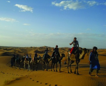 Students participating in fall 2012 Morocco SST ride on camels through the desert