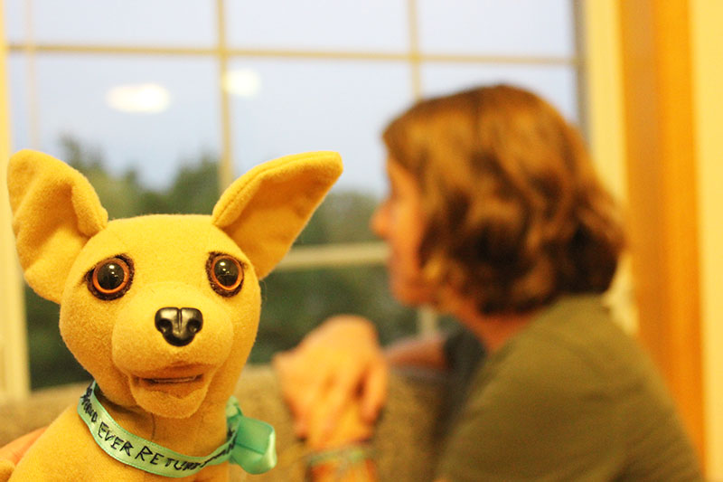 Closeup photo of Leah Landes' stuffed chihuahua with Leah in the background
