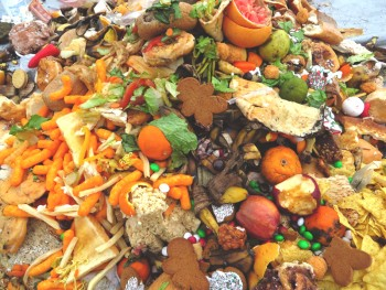 Naomi Gross and Cecilia Lapp Stoltzfus explore the issue of the amount of food waste in the United States. Photo contributed by Ryan Sensenig.