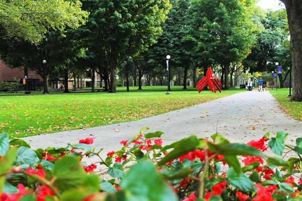 Flowers on goshen campus