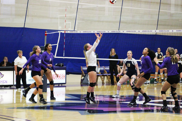 Volleyball team working together to return ball over net