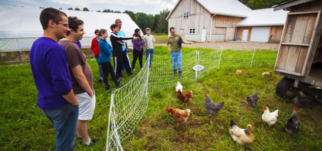 The discipline of sustainable food