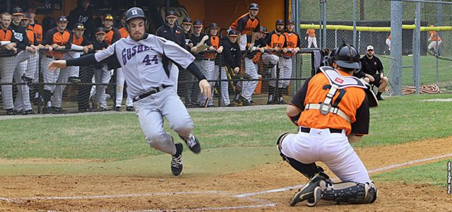 Baseball snags one from Spring Arbor