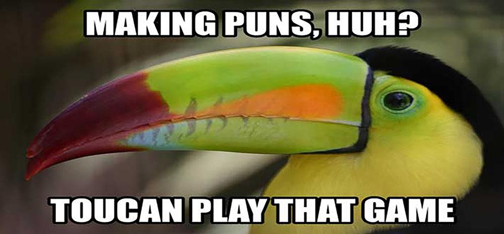 "Meme of a toucan saying: ""Making puns, huh? Toucan play that game"""