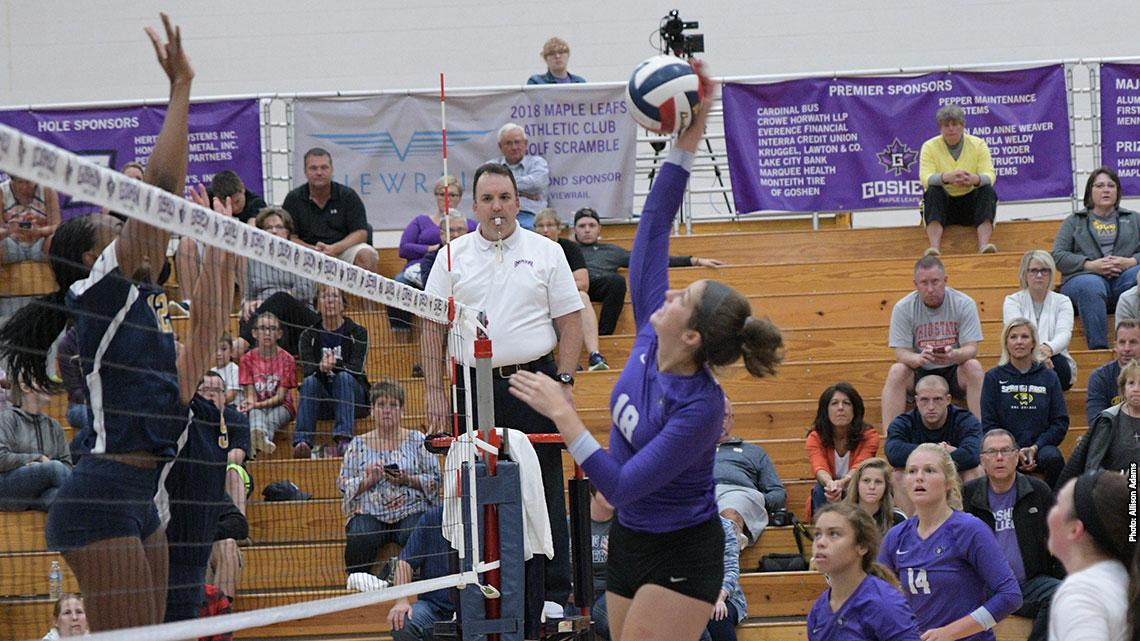 volleyball player spikes ball