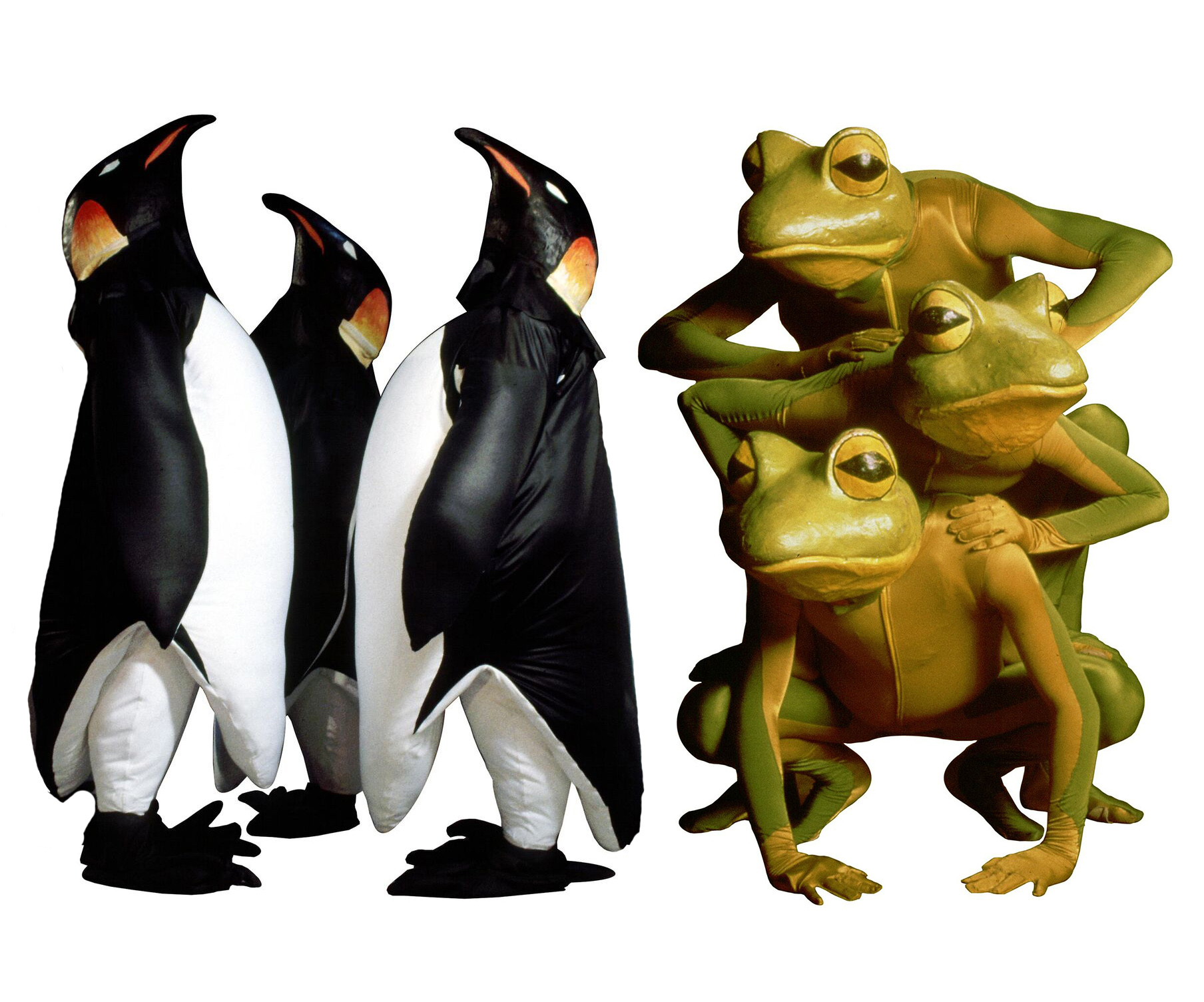 Dancers from the FROGZ Troupe dress up in frog and penguin costumes
