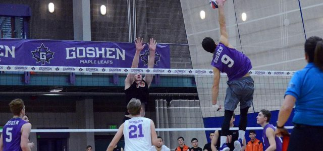 Volleyball splits four game tournament