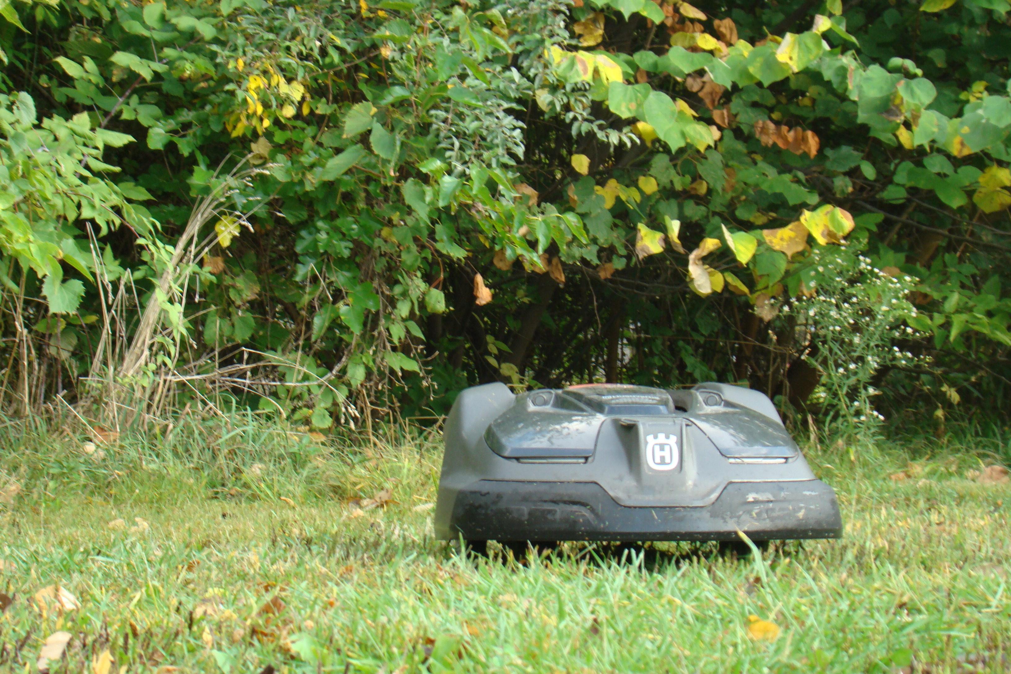 Robot mower nibbles grass