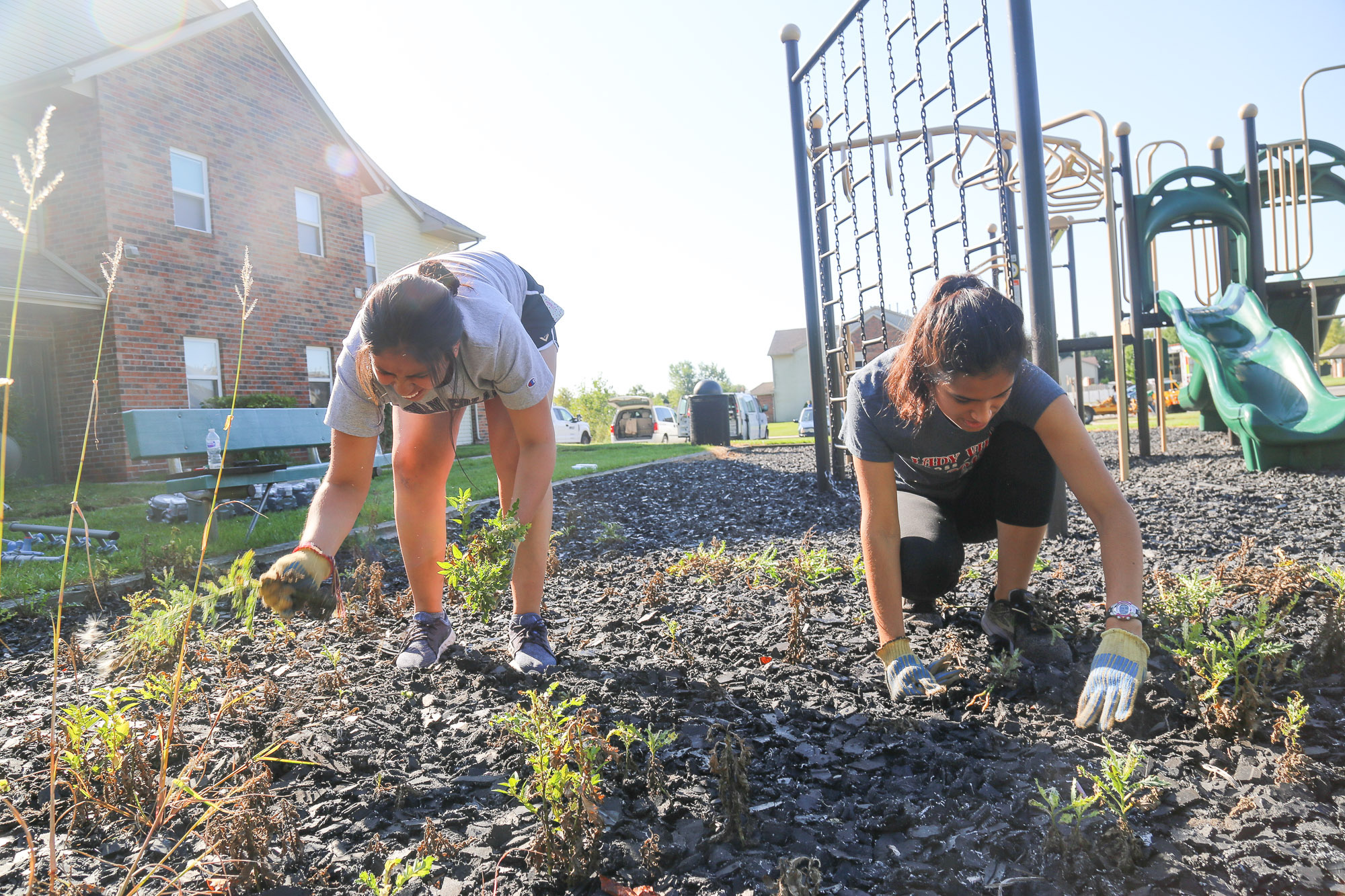 students pull weeds on service day