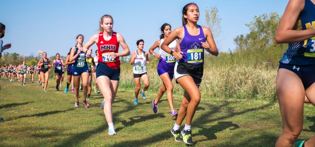 Maple Leafs' XC race past competition