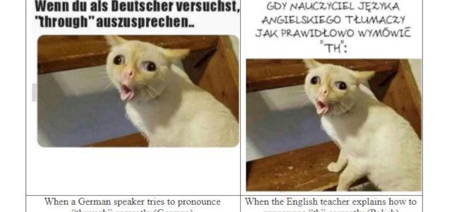 What do you Meme?: World Memes