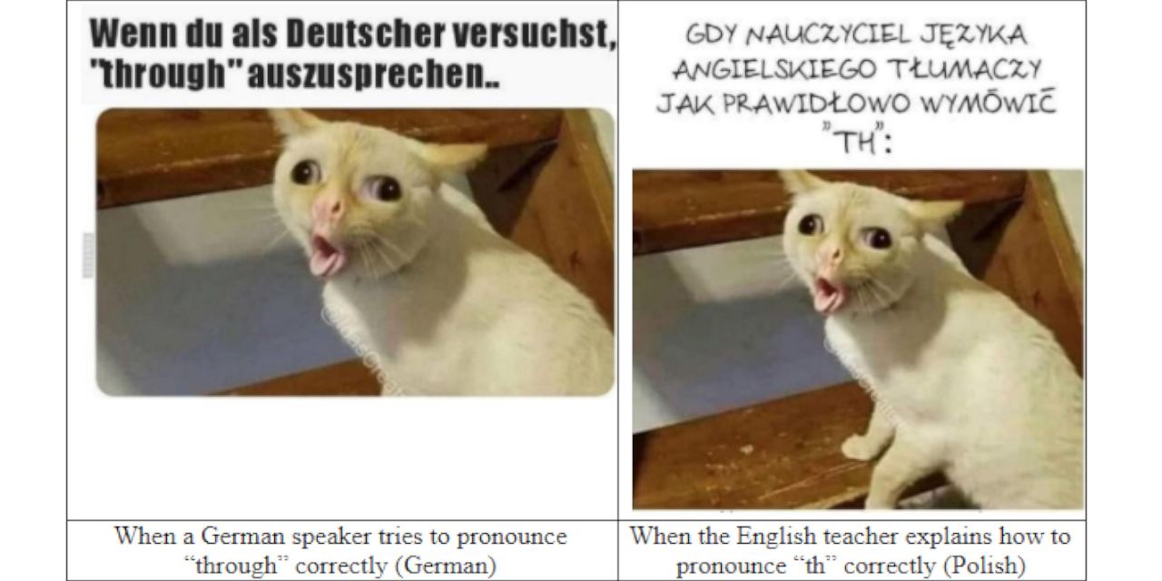 Cat meme about the difficulties of speaking different languages