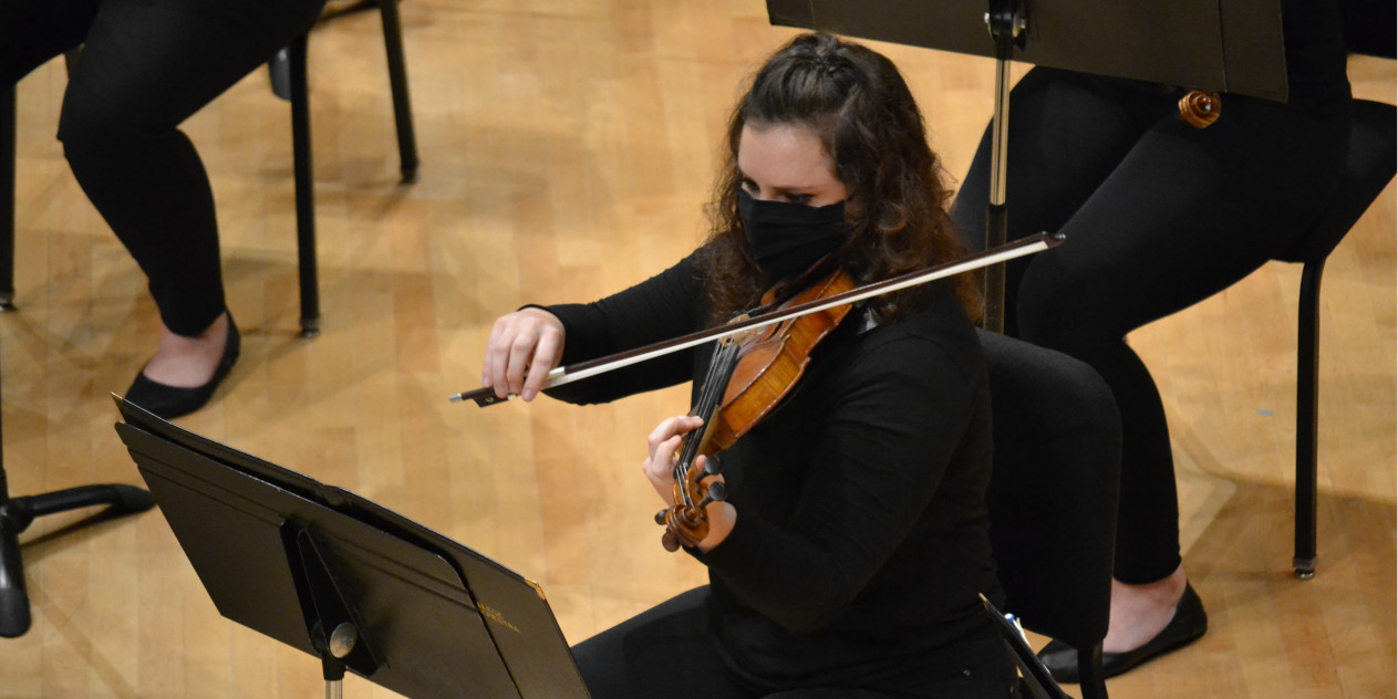 Musician plays violin in sauder