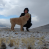 Stutzman with his dog in the desert