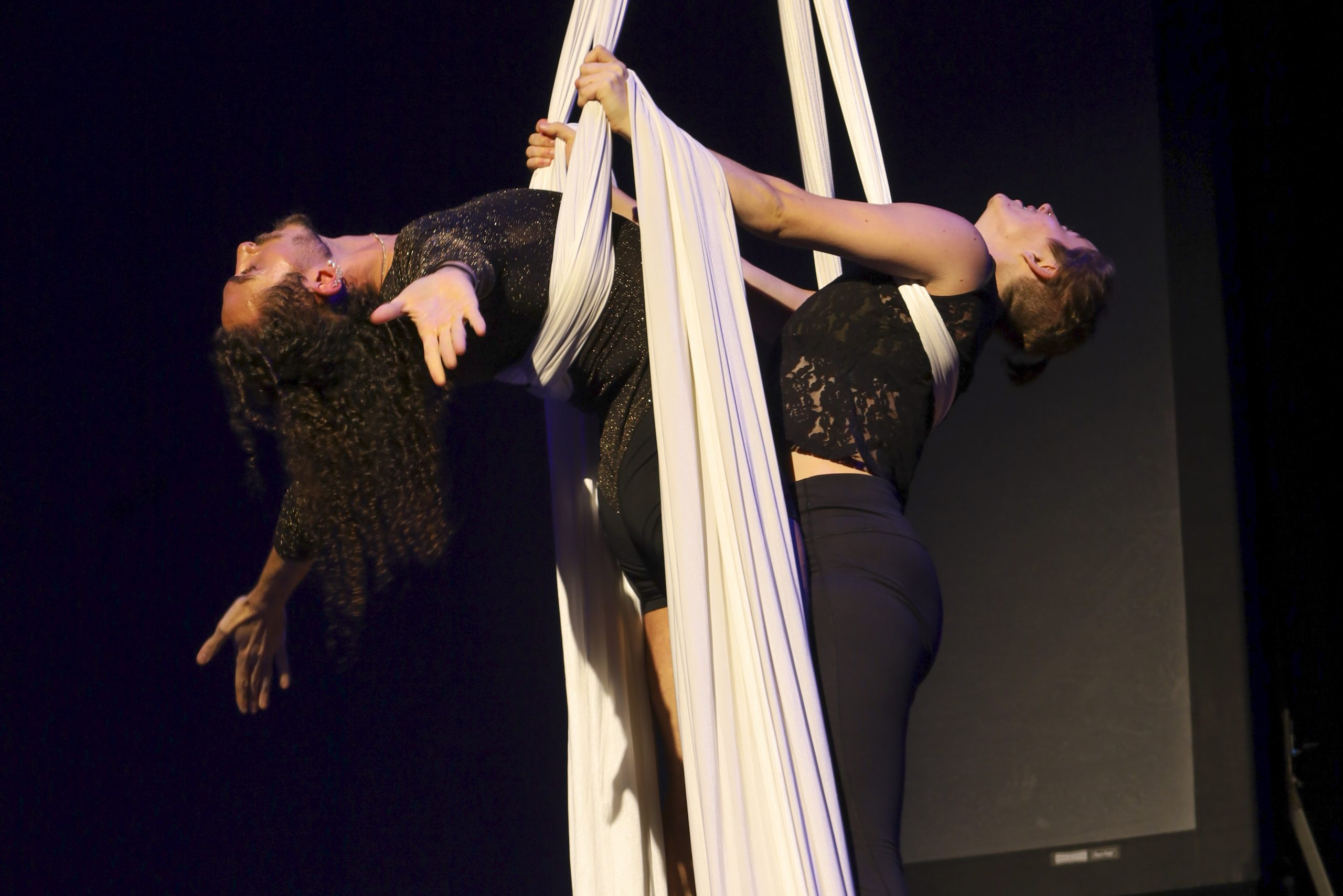 Performers on the silks